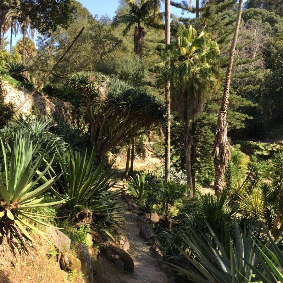Gardens of Monseratte