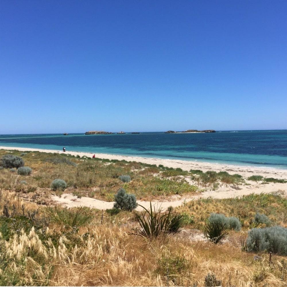 Australia; Shoalwater