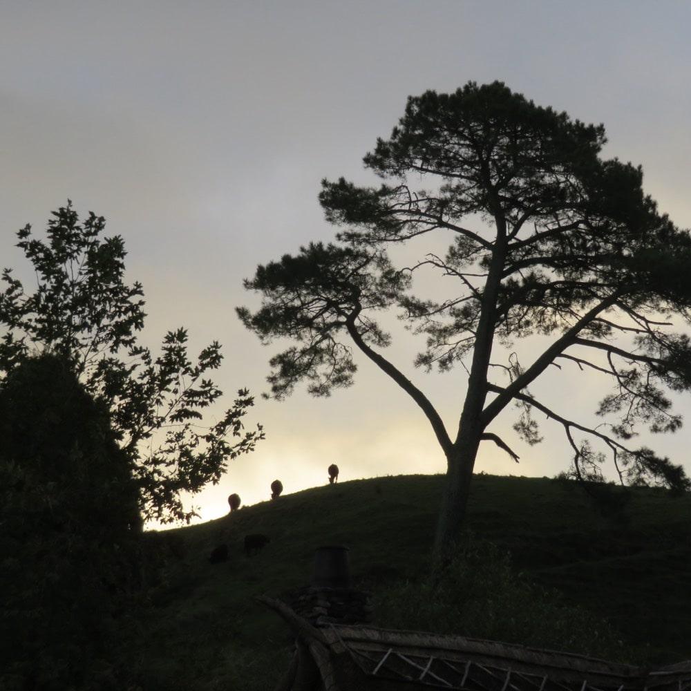 Hobbiton New Zealand at sunset
