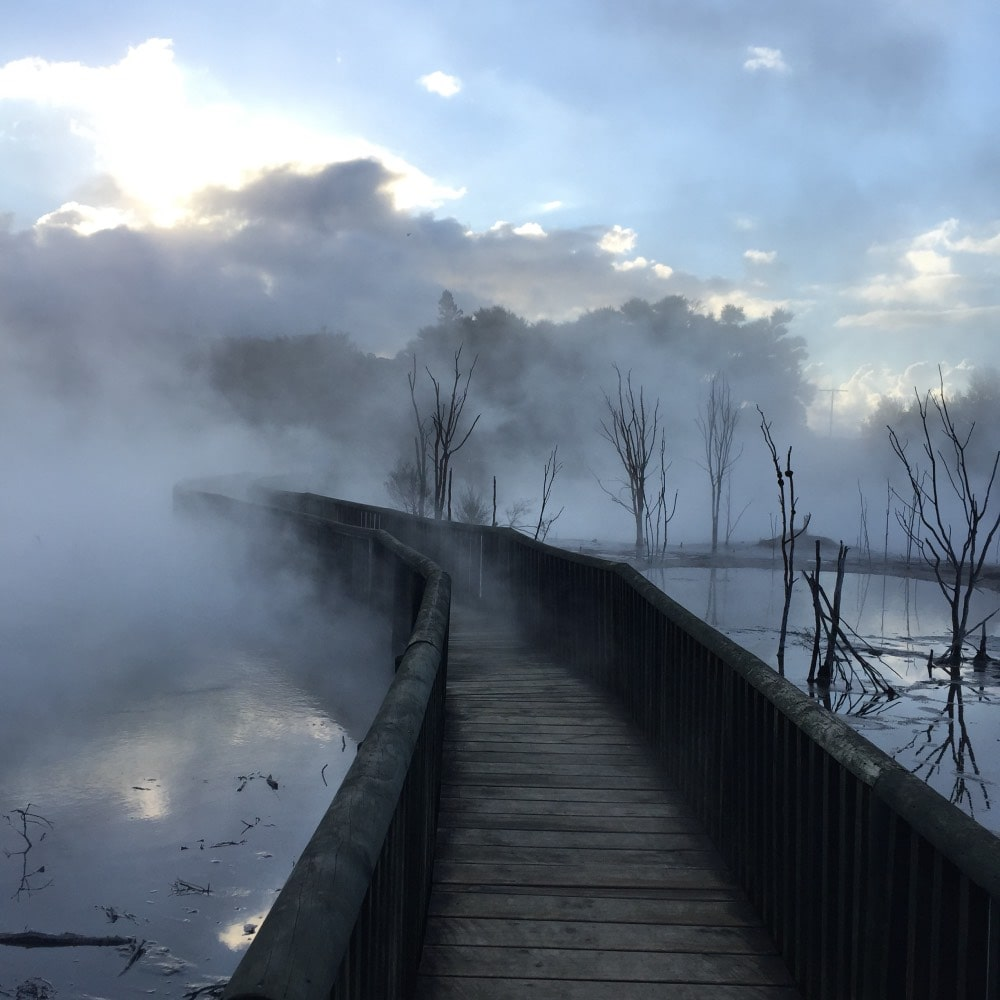 Sulphur steam in Rotorua