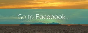 Go to Facebook button Brightful World footer