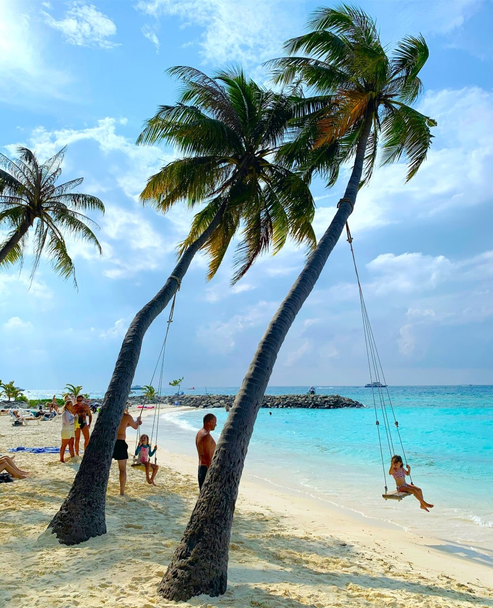 maafushi maldives sea beach palm tree swing